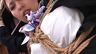 japanese cabin attendant
